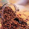 Качество кофейных зерен