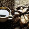 Развенчиваем мифы о вреде кофе