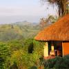 Уганда: отпуск на кофейной плантации