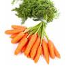 Кофе из моркови