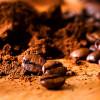 Обжаренные зерна кофе продлевают жизнь людям