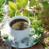 Травяной чай для зрения