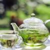 Зеленый чай блокирует действие лекарств против рака