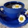 Чай из гвоздики и ромашки против тяжести в желудке