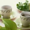Найден особый секрет пользы чая