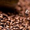 10 аргументов в пользу употребления кофе