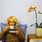 Чай из домашних растений