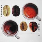 Кофе «Робуста» может стать популярнее «Арабики»