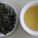 Белый чай: нежные листочки вкуса