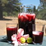 Как правильно готовить напиток каркаде