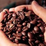 Новые таможенные правила удорожат овощи на 33%, а кофе – на 50%