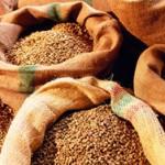 Индонезия пытается удержать экспортные позиции кофе