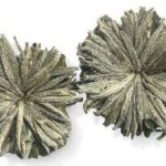 Бриллиантовый Дракон — чай от 100 болезней