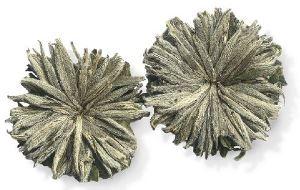 Бриллиантовый Дракон - чай от 100 болезней