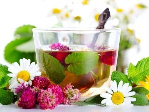 Чудесные травяные чаи
