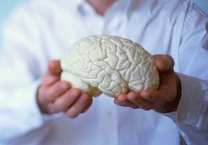 Напиток для мозга – это чай!