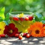 Опасность травяных чаев