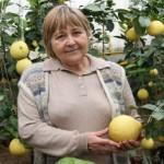 В Восточном Казахстане под землей выращивают цитрусовые и кофе