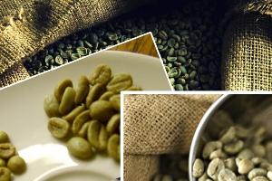 Как употреблять зеленый кофе
