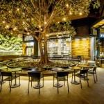 В Диснейленде открыли первый эко-кофешоп Starbucks