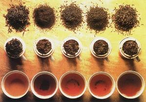 Каждый сорт чая полезен по-своему