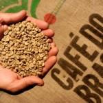 Бразилия может потерять 1-ое место на мировом рынке кофе
