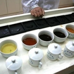 Дегустатор чая застраховал вкусовые рецепторы на один миллион фунтов